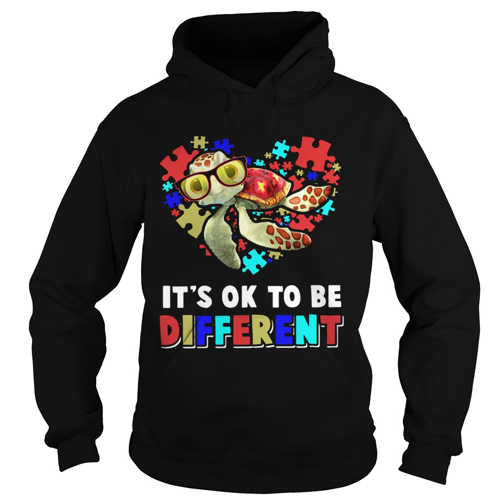 Turtle Autism Its Ok To Be Different  Hoodie