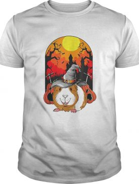 Guinea Pig Witch Pumpkin Halloween shirt