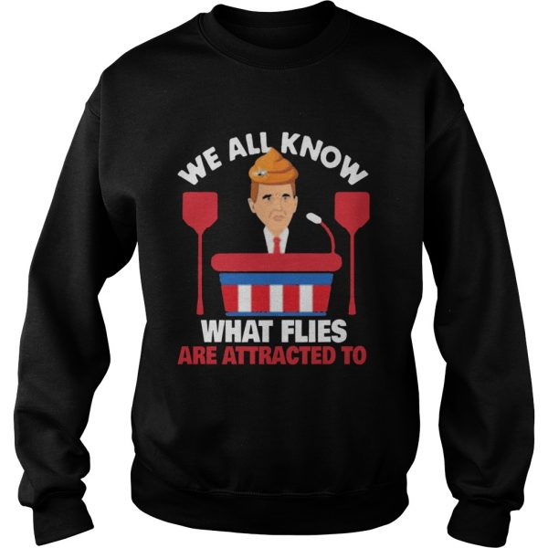 We All Know What Flies Are Attracted To Funny Pence 2020 VP Debate  Sweatshirt